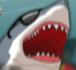 Sydney Shark // Game