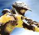 FMX Team 2 // Game