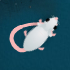 Journey of the Mouse // Game