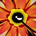 Ka Bloom // Game